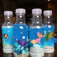 Attività per l'estate... il mare in bottiglia