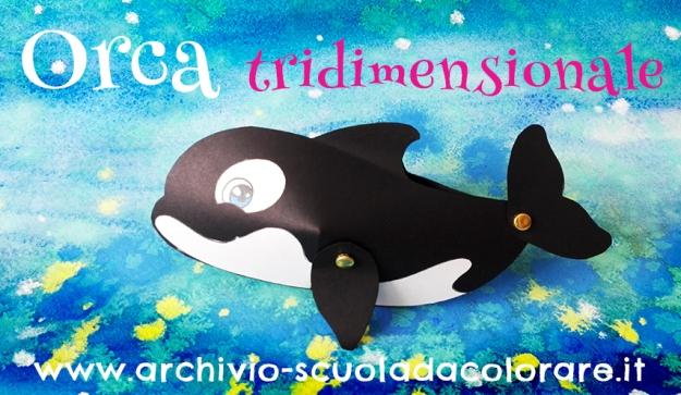 presentazione orca
